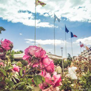 Expo Rose Grasse 2019