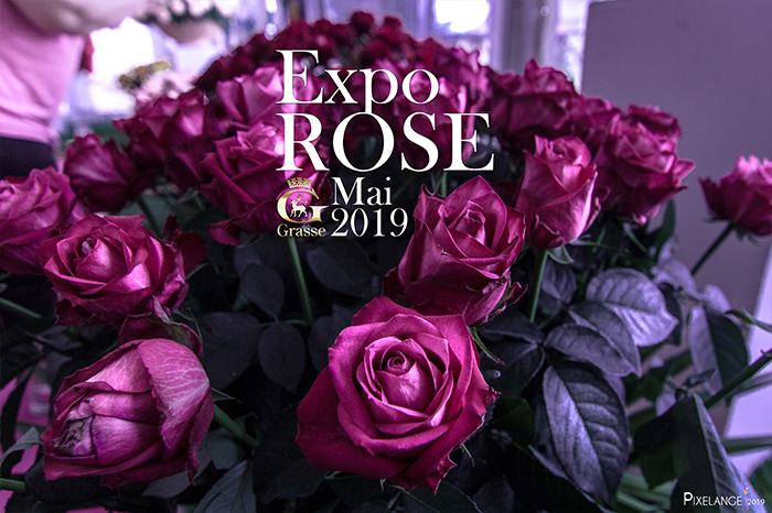Expo Rose Grasse 2019